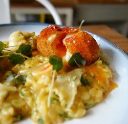 Fried Eggs with Octopus, Orzo and Tete de Moine (2)