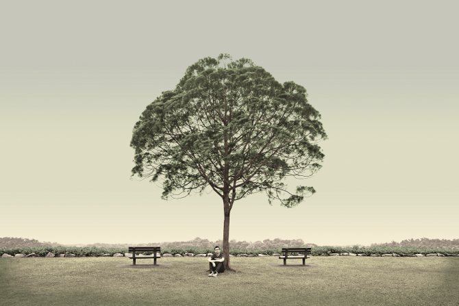 singapore-very-old-tree-the-wedding-tree-seletar-2015-by-robert-zhao-collection-of-the-national-museum-of-singapore
