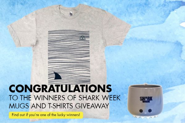 WEEKENDER Shark Week Mugs And T-shirts Giveaway