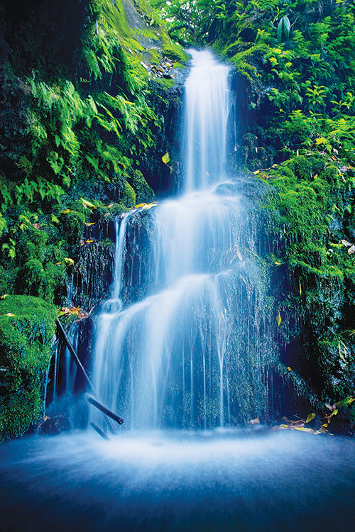 Make waterfalls milky, velvety smooth with any Compact Digital Camera