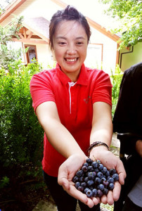 Jubilant hospitality, fresh blueberries, and fresh mountain air await in Sheiba Leisure Farm.