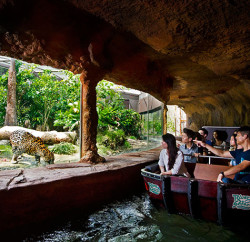 The River Safari is a unique animal encounter that is fun and exciting Photos: Wildlife Reserves Singapore