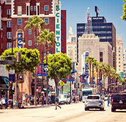 Hollywood Boulevard, where the famous Hollywood Walk of Fame is located Photo: Andrey Bayda