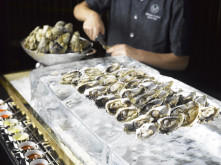 Slurp up our seasonal selection of deliciously rich American Oysters