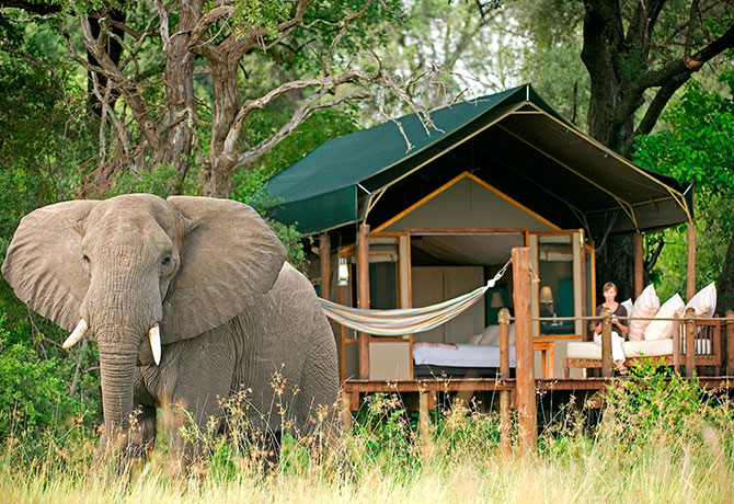 Be in the heart of nature, yet with creature comforts