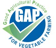 #104_food_gap_veg
