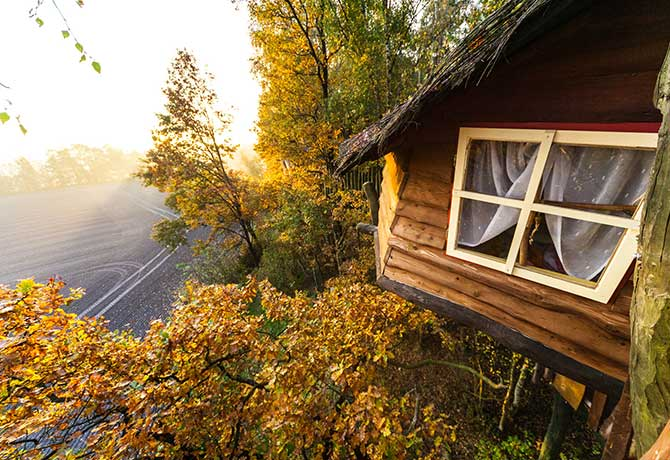 Some of the treehouse rooms offer stunning views of the German-Polish border