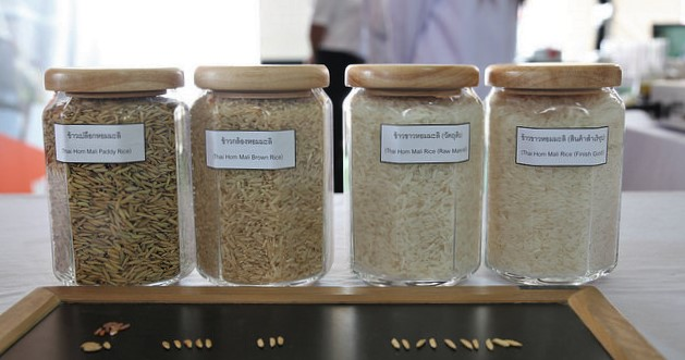 Different stages of Thai Hom Mali rice.