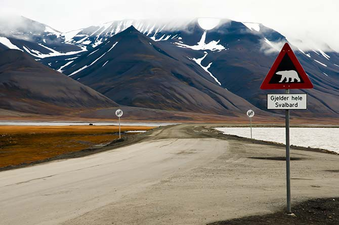 As you can tell from the sign, Longyearbyen is a good place to spot polar bears