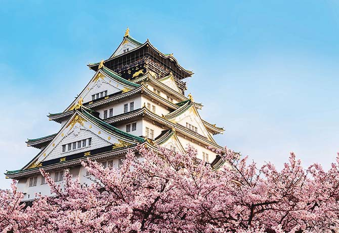 Osaka Castle with the cherry blossoms in bloom is a captivating sight