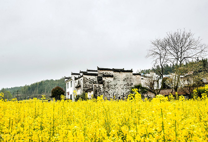 Wuyuan is one of the country's top photography destinations and is filled with historic villages