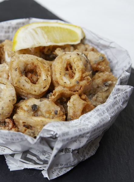 salt-pepper-squid-439-final-book-crop-for-folder